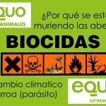 Consideramos desproporcionadas las medidas de la Junta de Extremadura contra el abejaruco