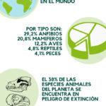 Día de los animales. España es el primer país en Europa en empobrecimiento de su biodiversidad