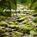 Día de los Bosques y de la Poesía